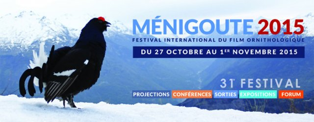 Bandeau Festival international du film ornithologique de Ménigoute 2015